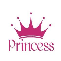 59f1170028b12_59edf98db5b50_Princess-logo.jpg