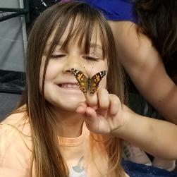 5d2b6d6e04fbd_butterfly.jpg