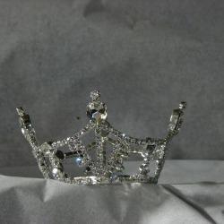 60940ae9b4edf_Princess-crown-photo.jpg