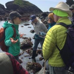 Guided Walk Leaders, Naturalists, Teachers