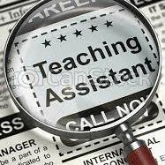 Volunteer - Teaching Assistant