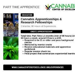 Part-Time Research & Data Fellow