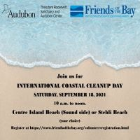 International Coastal Cleanup Volunteer