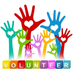 General Volunteer Interest Form